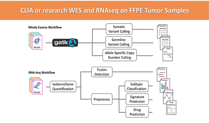CLIA or research WES and RNAseq on FFPE Tumor Samples