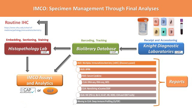 IMCO Specimen Management