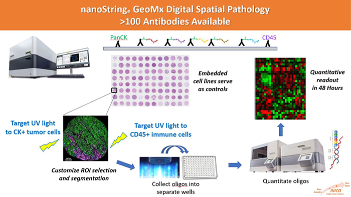 NanoString GeoMxDigital Spatial Pathology